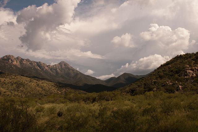 Santa Rita Mountains. Flickr/Mike Chapman