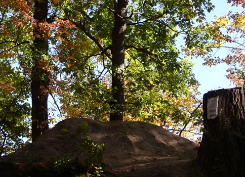 Watersnake Mound, a burial site for 3,000 years, in Toronto's High Park. Photo: Catherine Tammaro